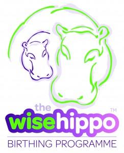 Wise Hippo Logo Block CMYK